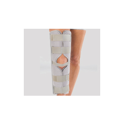 Immobilizer